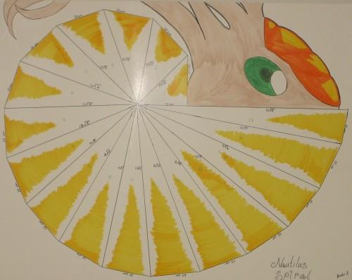 nautilusspiral